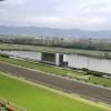 京都競馬場の天気、馬場状態