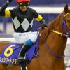 【マイルチャンピオンシップ2015】レッツゴードンキが買える3つの要素